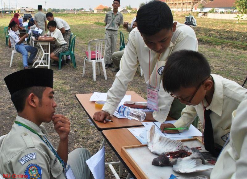 SMA Pesantren Darul Ulum Gelar Olimpiade Sains dan Sosial Nasional