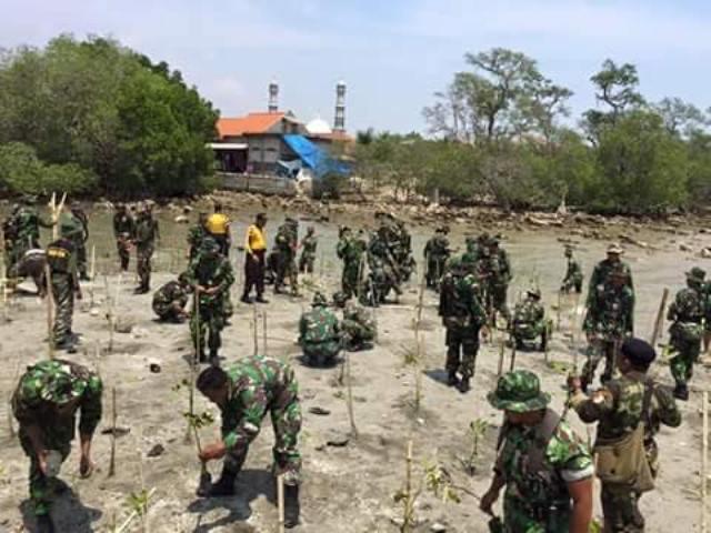 Kodim Lamongan Gandeng Banser Tanam Mangrove