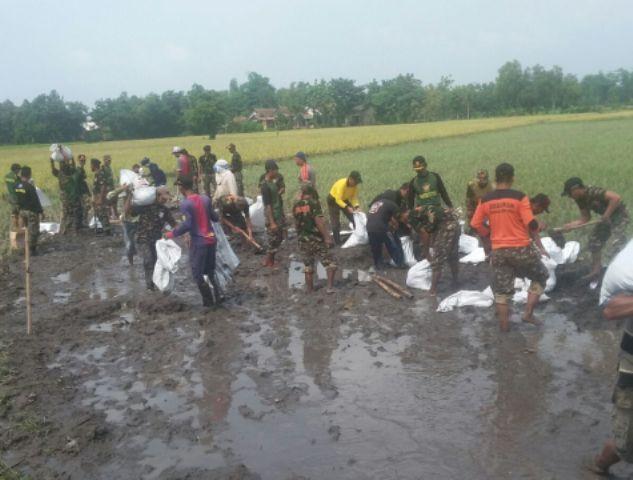 Sebabkan Sawah Banjir, Banser Turun Tangan Atasi Tanggul Jebol