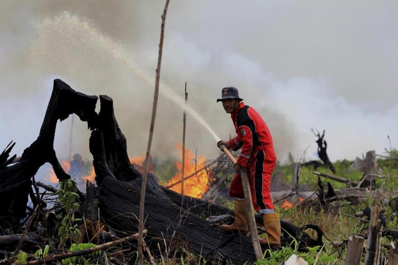 LPBINU Imbau Hindari Pembakaran untuk Buka Lahan