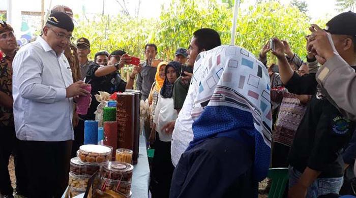 Mendes Dorong Desa Kembangkan Pertanian Organik