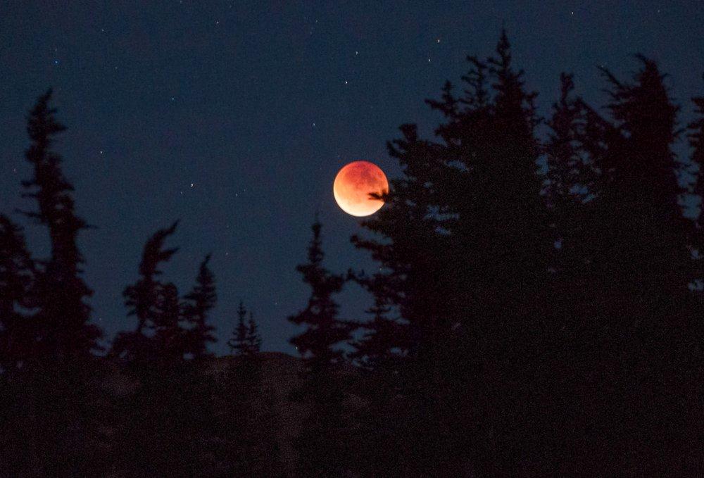 Khutbah Gerhana Bulan: Tafakur, Ibadah yang Sering Dilupakan