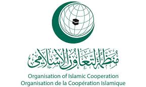 OIC countries face deadly diseases: Minister
