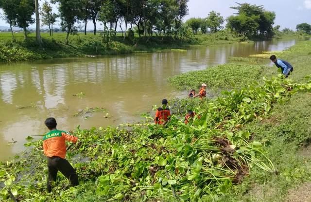 LPBINU Pekalongan dan Kudus Tanam Pohon dan Bersih-bersih Sungai