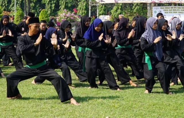 Pencak Silat Pagar Nusa Perluas Syiar NU di Pacarpeluk