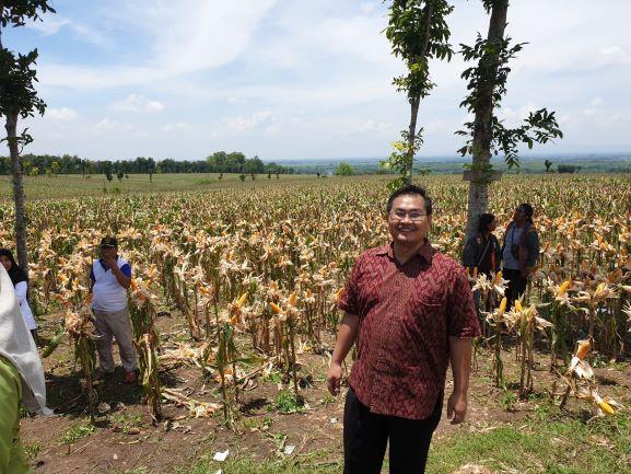 Kementan Dorong Pembangunan Pertanian di Bangkalan Madura