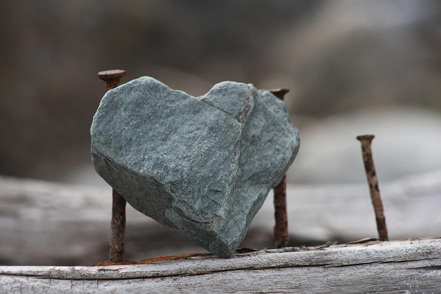 Politikus Berhati Batu