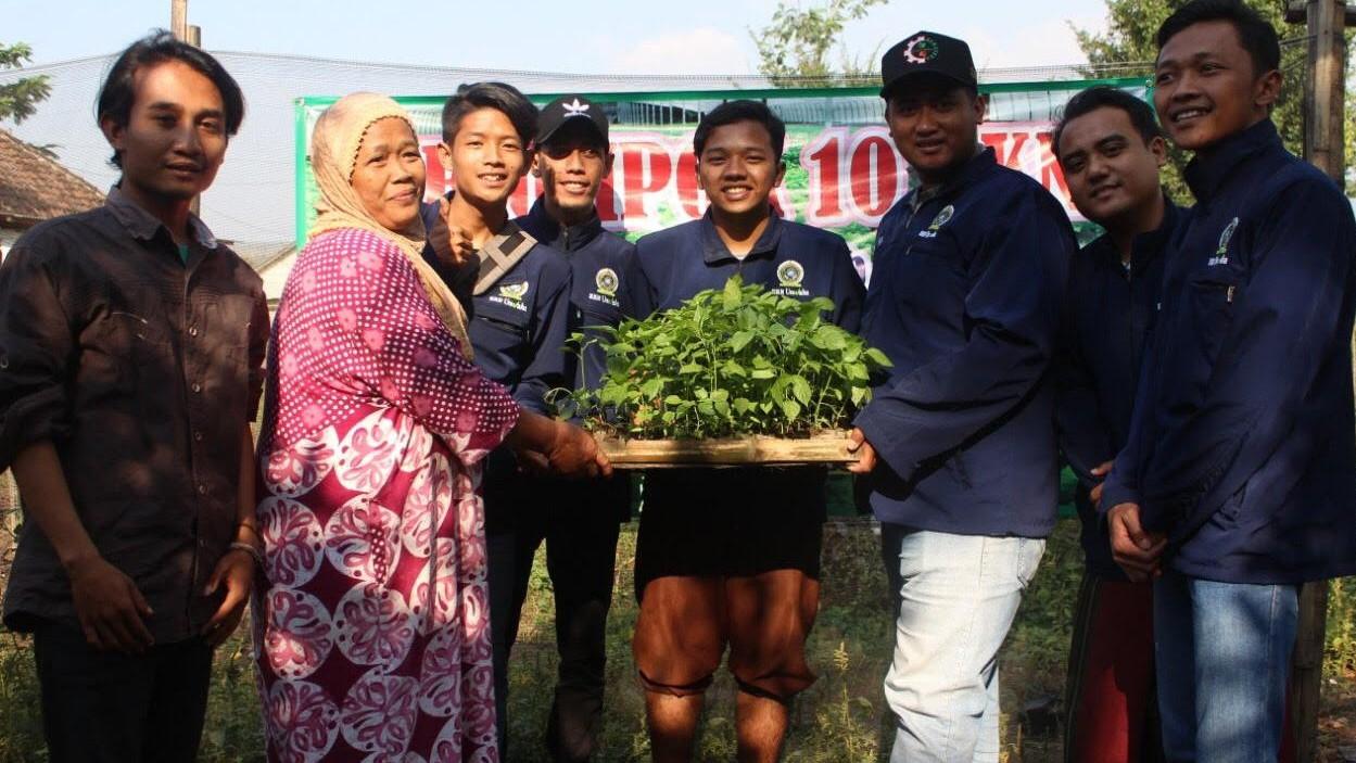 Manfaatkan Pekarangan Rumah, Tani Millenial dan Kaum Emak di Jombang Tanam Holtikultura