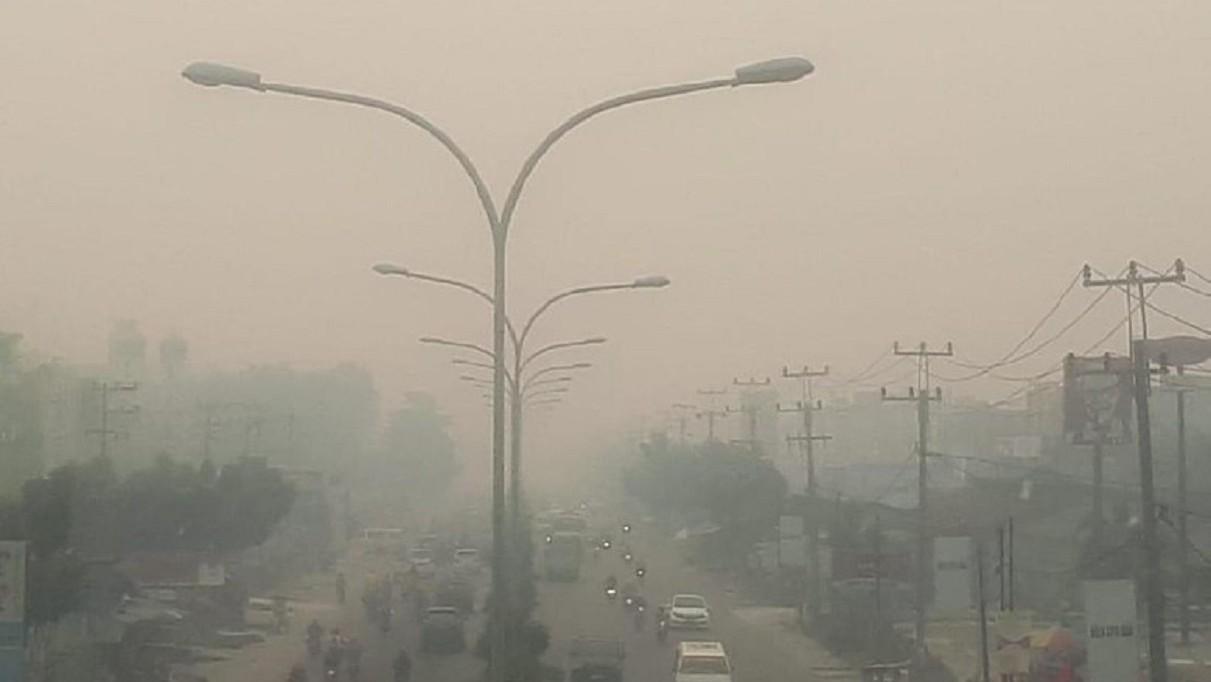 Pemerintah Didesak Cabut Izin dan Pidanakan Perusahaan Pembakar Hutan