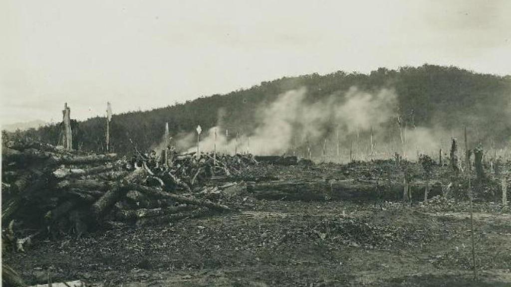 Penyebab Bencana Kabut Asap Selama Berabad-abad Silam