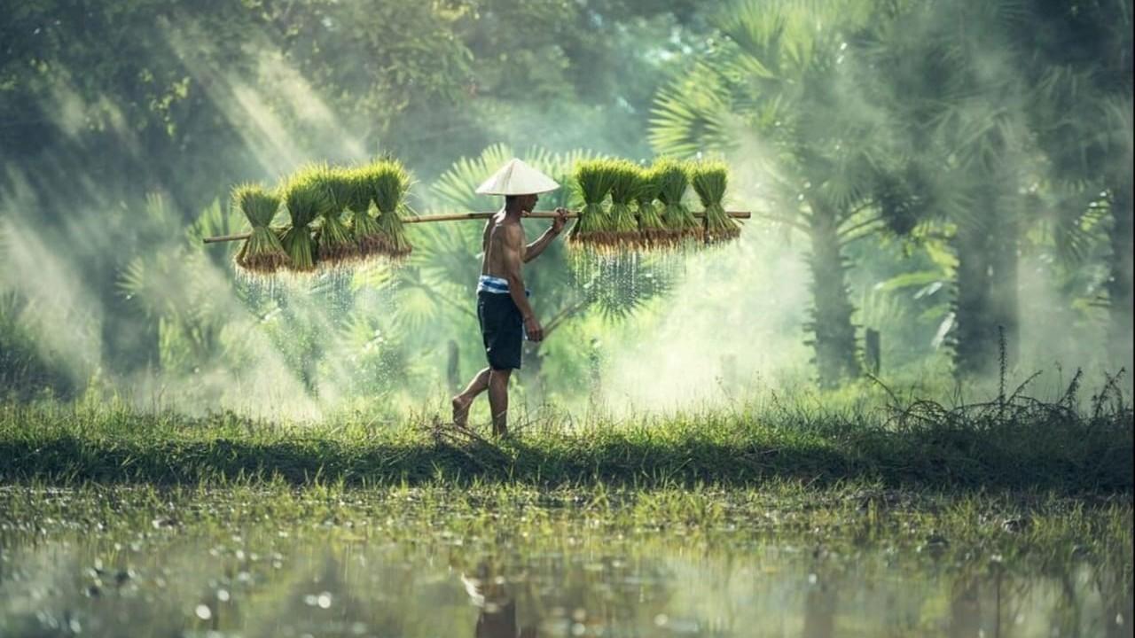 Pembangunan Fisik Desa Harus Berdampak pada Kesejahteraan Warga