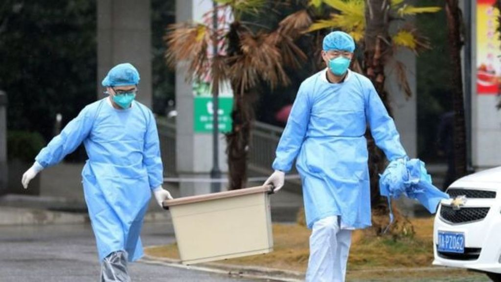 17+ Virus corona dari hewan liar terbaru