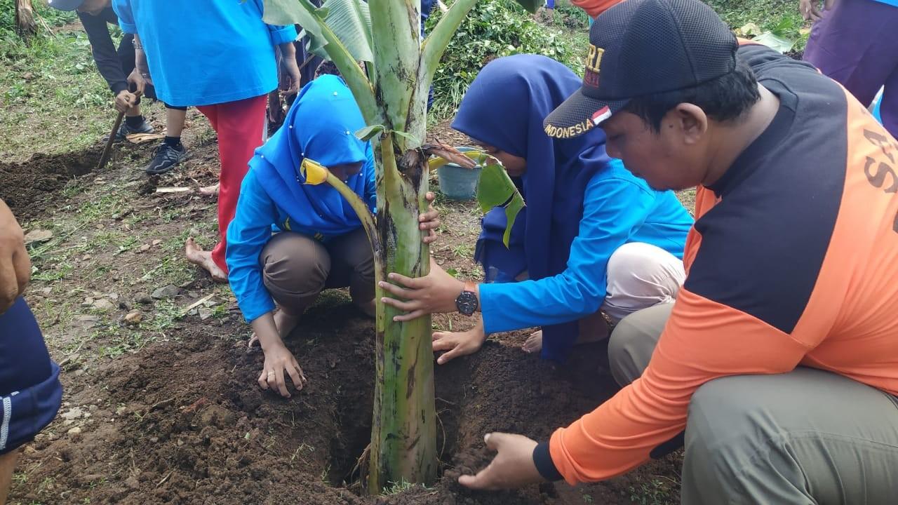 IPNU-IPPNU di Mojokerto Berdayakan Ekonomi dengan Pohon Pisang
