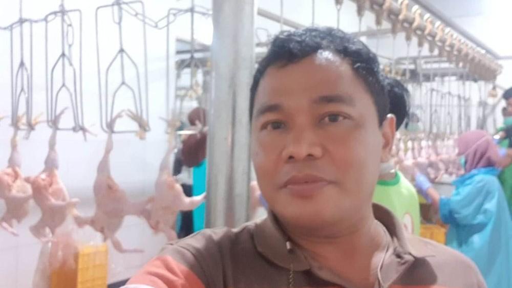 Inkopsim: Peternak dan Konsumen Ayam Jangan Dirugikan
