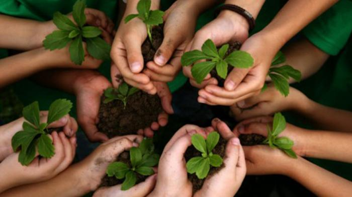 Sedekah Oksigen, Perlawanan Gusdurian pada Perubahan Iklim