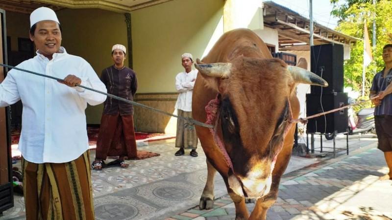 Pengusaha di Surabaya Serahkan Hewan Kurban Pemenang Kontes