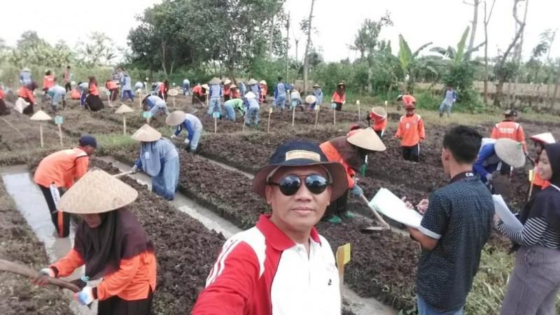 Jatuh Bangun, Minarno Sukses Produksi Benih Bibit Hortikultura