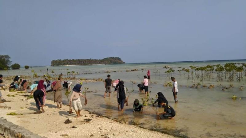 PMII Universitas Lampung Tanam 600 Mangrove