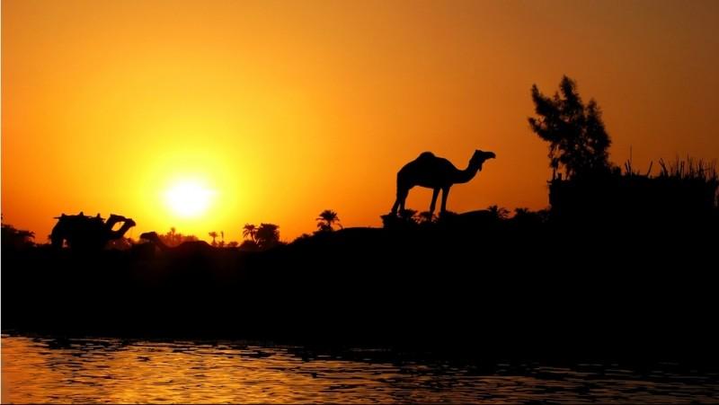 Benarkah Sungai Nil dan Eufrat Bersumber dari Surga?