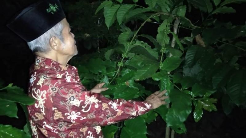 H Abdul Mukti, Kiai Penggerak Kopi
