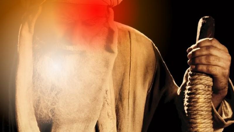 Haiwah bin Syarih, Ulama Besar yang Disuruh Memberi Makan Ayam