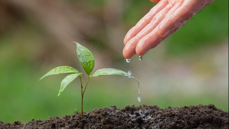 Kelestarian Lingkungan Harus Menjadi Perhatian Bersama