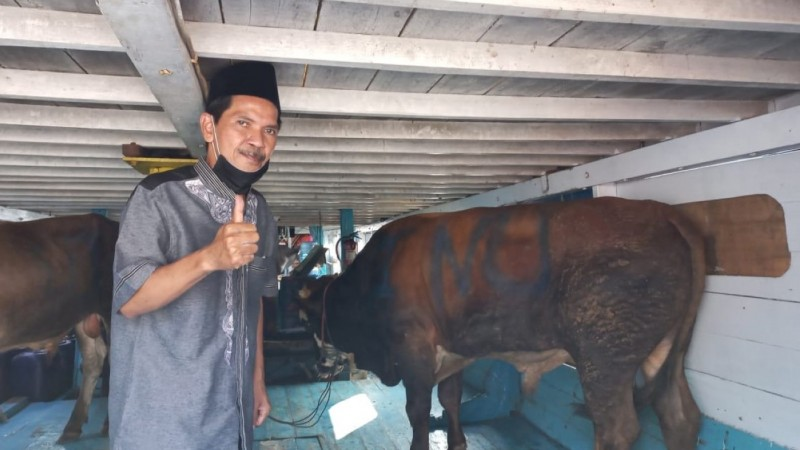 PWNU DKI Jakarta Sumbangkan Sapi ke PCNU se-Ibu Kota