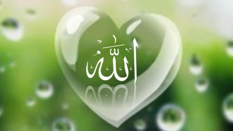 Baik Sangka kepada Allah sebagai Bukti Cinta Hamba