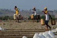 Lembaga Perekonomian NU Dukung Menteri Susi Hentikan Impor Garam