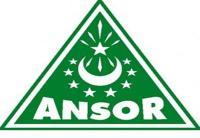 """Ansor Way Kanan Beri """"Syahadah Bintang Sembilan"""" untuk Kader Pengabdi"""