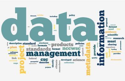 Menata Organisasi dengan Perbaikan Database