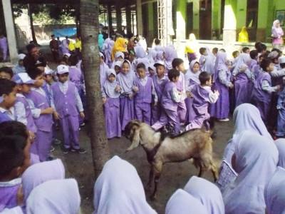 Cara Lembaga pendidikan Roushon Fikr Jombang Ajari Anak Asuhnya Berkurban