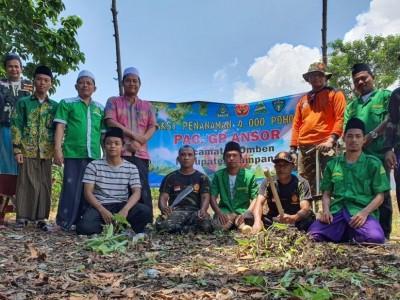 Gerakan Penghijauan Ansor Omben Sampang Tanam 4.000 Pohon