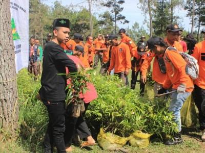 Hijaukan Alam, NU Backpacker Karanganyar Tanam 1.000 Bibit Pohon