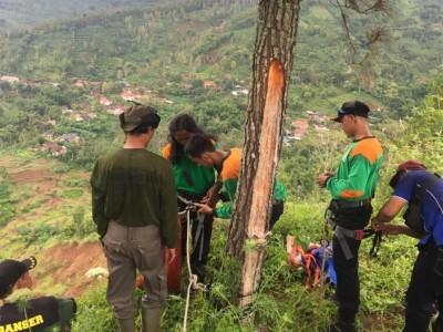 Cegah Longsor, LPBINU Ponorogo Tanam Vettiver di Desa Banaran