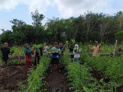 BRG Dorong Desa Tingkatkan Produk Komoditi Pertanian