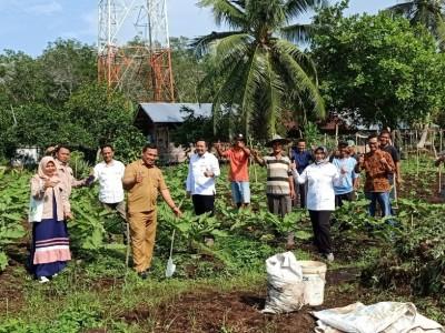 34 Hektare Lahan Gambut di Riau Direstorasi untuk Pertanian