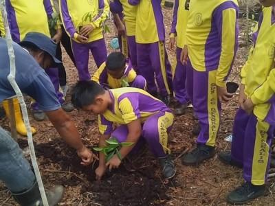 20 Hektare Gambut di Riau Dihijaukan BRG