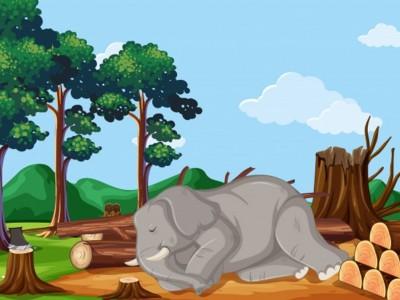 Modul Animasi, Media Pendidikan Raudhatul Athfal Berbasis Teknologi