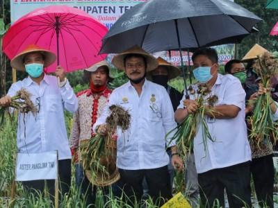 Di Tengah Wabah Corona, Ekspor Pertanian Indonesia Naik Sebesar USD 320 Juta