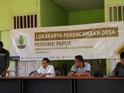 Penanaman Sagu di Perdesaan Papua Menjaga Ekosistem Gambut