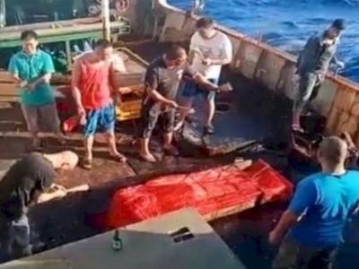 Soal ABK Dilarung ke Laut, Harus Investigasi sesuai Hukum Internasional