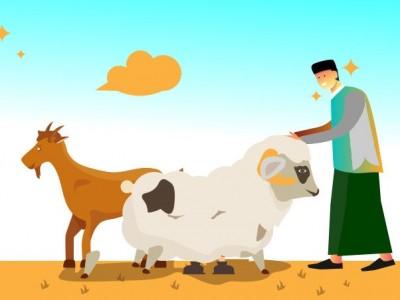 Sejarah Ibadah Kurban dalam Islam