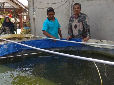 Aktivis NU Kota Banjar Ini Kembangkan Potensi Warga dengan Bioflok Ikan Lele