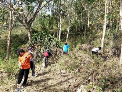 Ma'arif NU dan Perhutani Tulungagung Kerja Sama Pemanfaatkan Lahan untuk Perkemahan