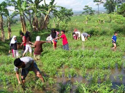 Pesantren Ekologi Ath-Thaariq Garut: Terapkan Kurikulum Bertani dan Berkebun