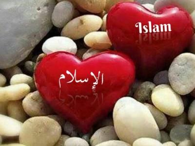 Dakwah Islam Ramah Perlu Diterapkan di Prancis