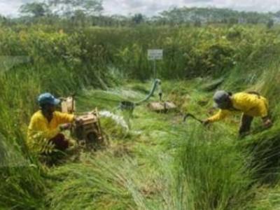 BRG Wujudkan Impian Warga Jambi Dapatkan Air Bersih dengan Mudah