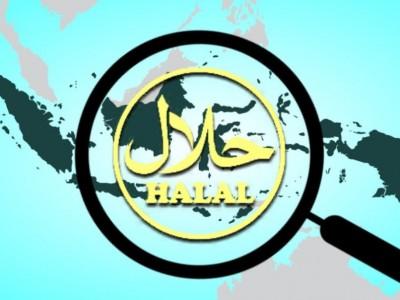 Logistik Halal Penting Diperhatikan di Tengah Pandemi, Begini Caranya