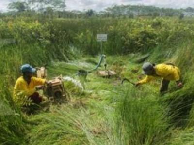 Desa Peduli Gambut dalam Kerangka Pembangunan Berkelanjutan